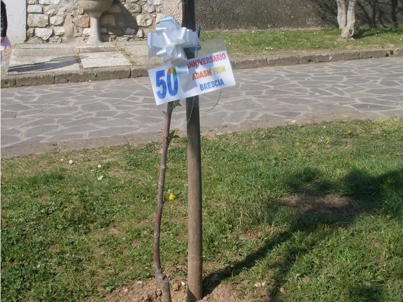 Asilo D. Merici Manerba Del Garda