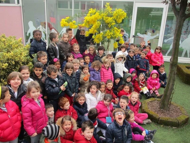 Scuola Cristoforo Tempini - Berlingo