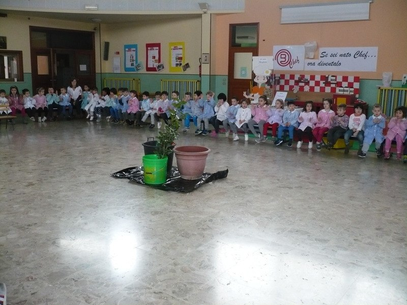 Scuola S.Giuseppe Travagliato